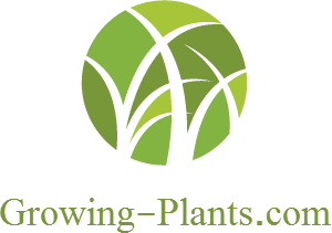 Growing-Plants.com